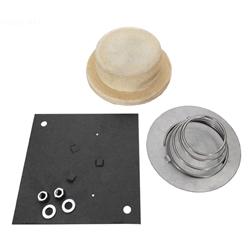 R0392500 Jandy Pro Series Plug Insp Hole Firebox