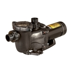 Pool Pumps | Spa Pumps