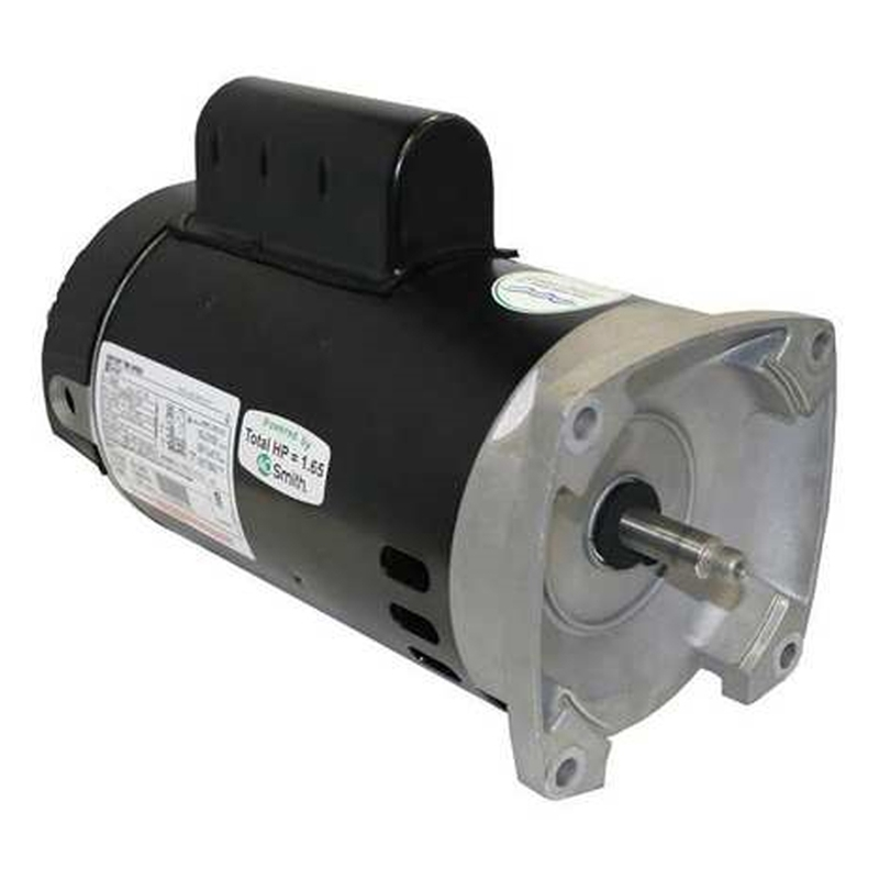 High Efficiency 2 Speed Pool Pump Motors 56y Square Flange
