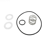 14962-0035 | Spring and O-Ring Kit