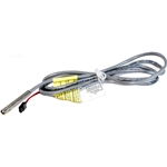 Cable + Hi-Limit Thermis-Jst 48In